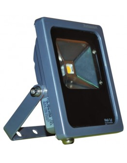 FortuneArrt 50 watt LED Flood Fil Cob