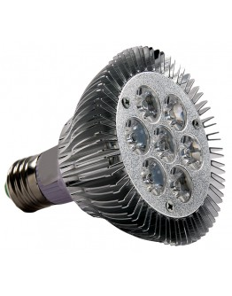 FortuneArrt 7 WATT LED PAR LAMP
