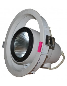 FortuneArrt 20 watt LED Cob Fitting