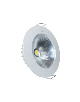 FortuneArrt 30 watt LED Cob Range Light