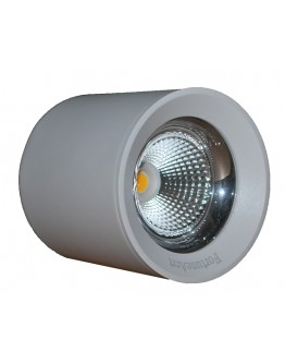 FortuneArrt 12  watt LED Cob Surface