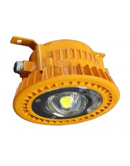 FortuneArrt 50 watt LED Flame Proof Light