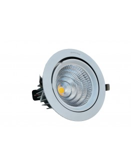 FortuneArrt 50Watt LED Cob  Lights
