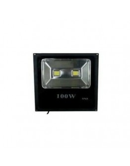 FortuneArrt 100 Watt Led Flood Light