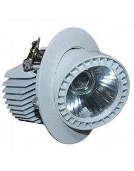 FortuneArrt 25 Watt Led Cob Light
