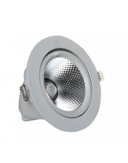 FortuneArrt 30 Watt Led Cob Light