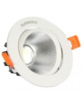 FortuneArrt 10 Watt  LED COB Light.