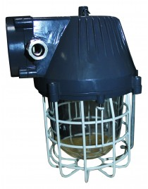 FortuneArrt  30Watt Flame Proof Light