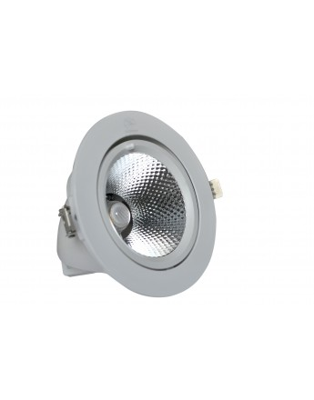 FortuneArrt 20 WATT LED COB RANGE Light