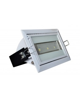 FortuneArrt 30 WATT LED COB ZOOM Range Light