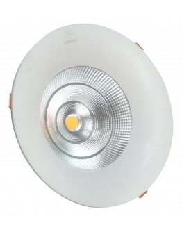 FortuneArrt 75 Watt  LED COB Light
